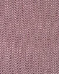 Maxwell Fabrics Dizzy Lizzy 806 Tutti Frutti Fabric