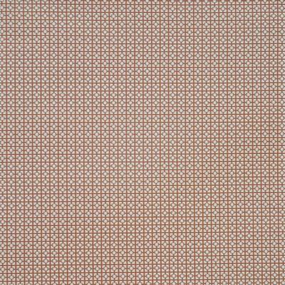 Maxwell Fabrics DIODE                          909 MACAROON            Maxwell Fabrics
