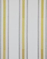 Maxwell Fabrics Ensign 346 Sungod Fabric