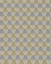 Maxwell Fabrics Force Field 3040 Corona Fabric