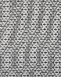 Maxwell Fabrics Havasu 944 Carbon Fabric