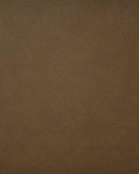 Maxwell Fabrics Hidalgo 720 Whiskey Fabric