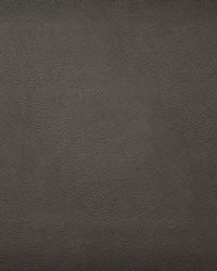 Maxwell Fabrics Hidalgo 743 Espresso Fabric