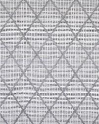 Maxwell Fabrics Incognito 359 Mist Fabric