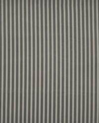 Maxwell Fabrics Inline 117 Shadow Fabric