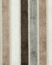Maxwell Fabrics NOTRE DAME 301 PEBBLE Fabric