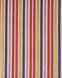 Maxwell Fabrics Narrow Margin 202 Currants Fabric