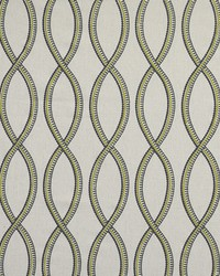 Maxwell Fabrics On Track 205 Amazon Fabric