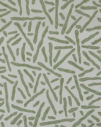 Maxwell Fabrics Open Concept 628 Grass Fabric