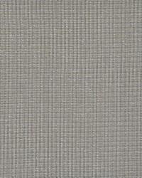 Maxwell Fabrics Perimeter 371 African Grey Fabric