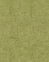 Maxwell Fabrics Pinnacle 153 Olive Fabric