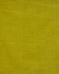 Maxwell Fabrics Rave 535 Mustard Fabric