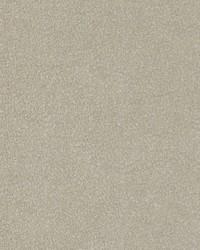 Maxwell Fabrics Soft Spot 4102 Ecru Fabric