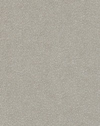 Maxwell Fabrics Soft Spot 4383 Dove Fabric