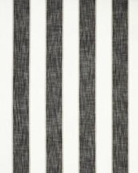 Maxwell Fabrics Sugar Creek 404 Wizard Fabric