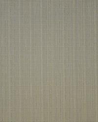 Maxwell Fabrics Skipjack 805 Shell Fabric