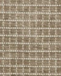 Maxwell Fabrics TIMES SQUARE 13 LATTE Fabric