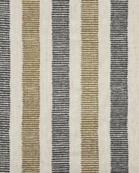 Maxwell Fabrics Trailhead 659 Elements Fabric