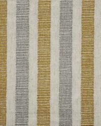 Maxwell Fabrics Trailhead 665 Charm Fabric