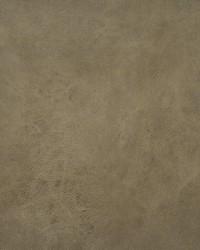 Maxwell Fabrics Wadi 131 Camel Fabric