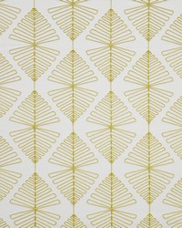 Maxwell Fabrics Yucca 426 Starfruit Fabric