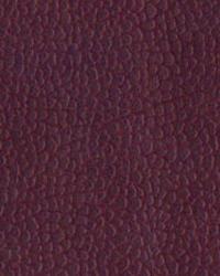 Novel Suede Cabernet Fabric
