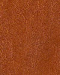 Novel Brooklyn Carrot Fabric