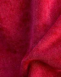 Novel Unique Poinsetti Fabric