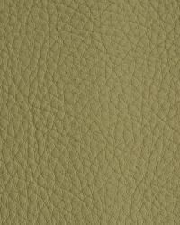 Novel Walter Celery Fabric