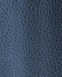 Novel Walter Navy Fabric