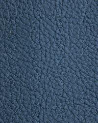 Novel Walter Blue Ridge Fabric