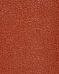 Novel Walter Persimmon Fabric