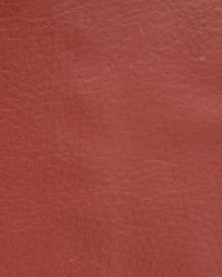 Novel Wang Baked Clay Fabric