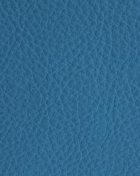 Novel Walter Lake Fabric