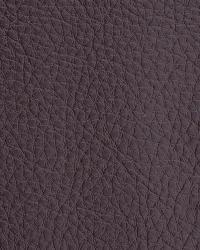 Novel Walter Burgundy Fabric