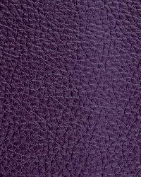 Novel Walter Grape Fabric