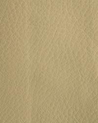 Novel Wang Ecru Fabric
