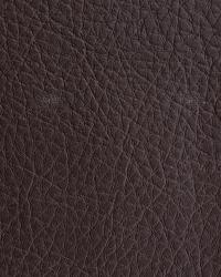Novel Walter Fudge Fabric