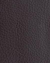 Novel Walter Chocolate Fabric