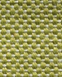Novel Hot Shot Aloe Fabric
