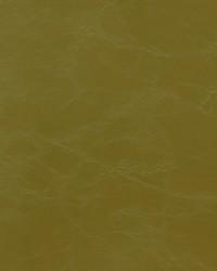 Novel Armstrong Kiwi Fabric