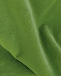 Novel Trek Olive Fabric