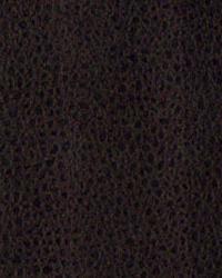 Novel Suede Espresso Fabric
