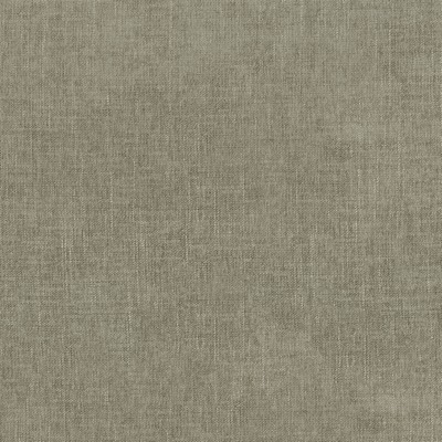 P K Lifestyles Remy Taupe Search Results
