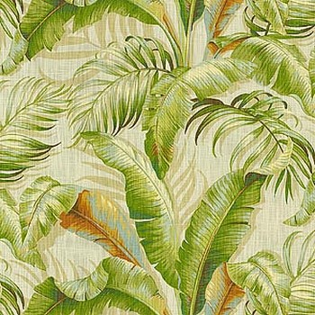 P K Lifestyles Palmiers Sunsplash Search Results