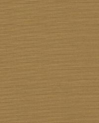 Robert Allen Street Way Bamboo Fabric