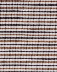 Robert Allen Monteria Cocount Fabric