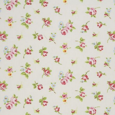 Clarke and Clarke Rosebud 1 CHINTZ Search Results