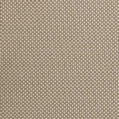 Clarke and Clarke STELLA F0434 TAUPE Search Results