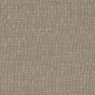 Clarke and Clarke NANTUCKET F0594 TAUPE Search Results